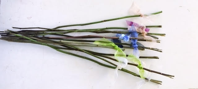 Dried rose stems are much more environmently friendly than the typical plastic picks.