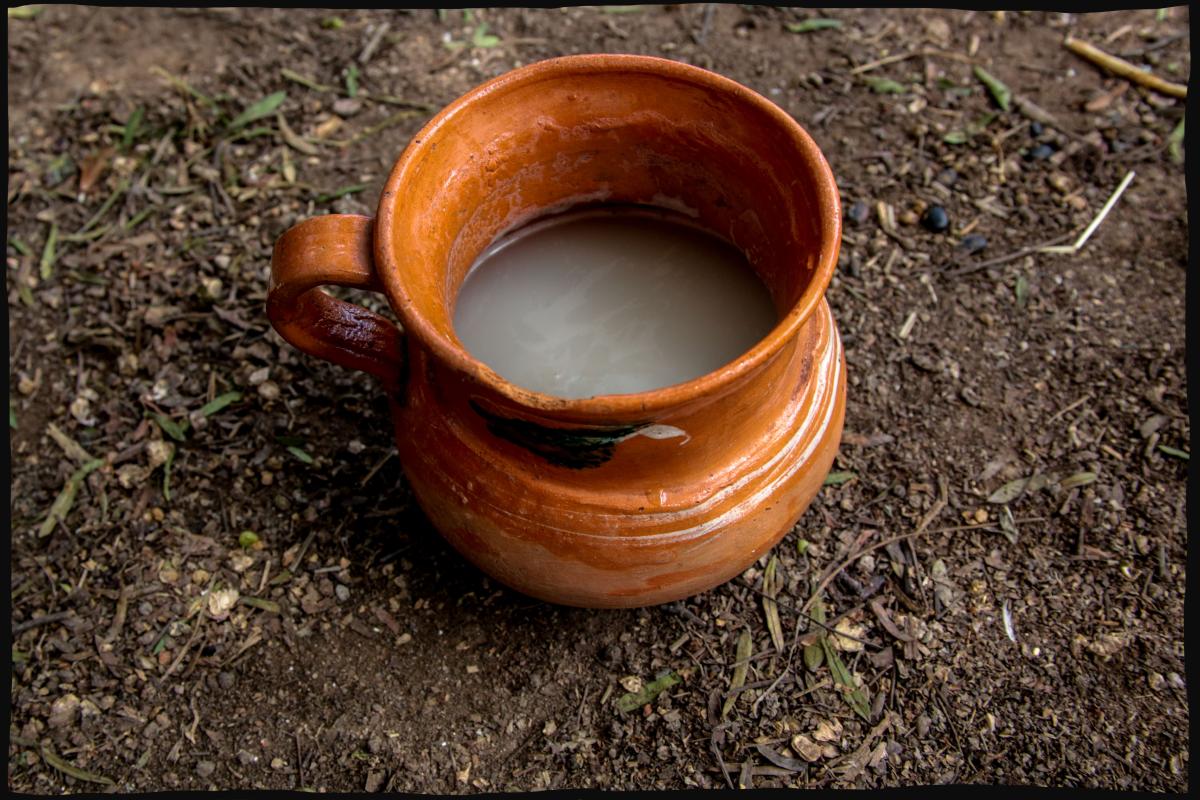 pulque6.png