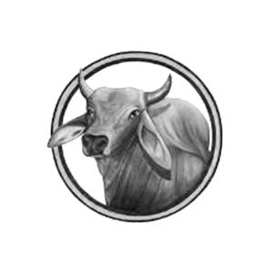 kingsville.png