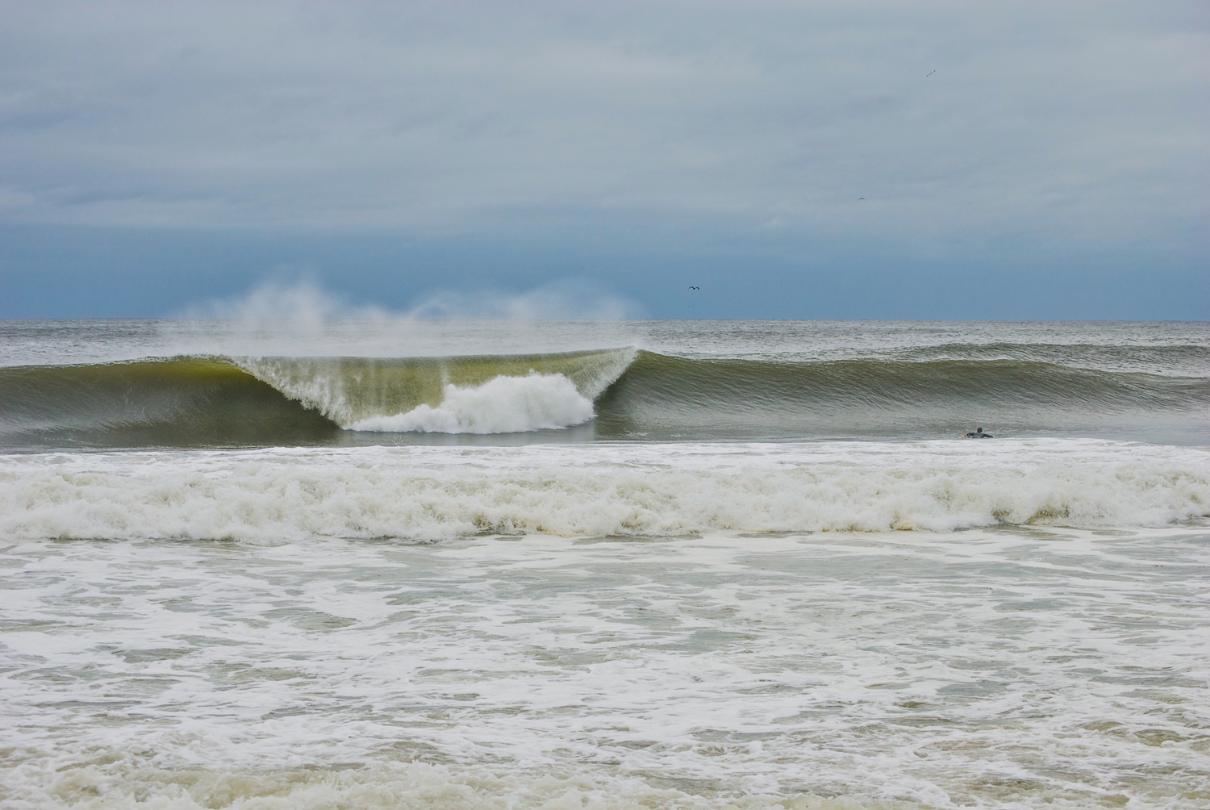 Sandy 1.png