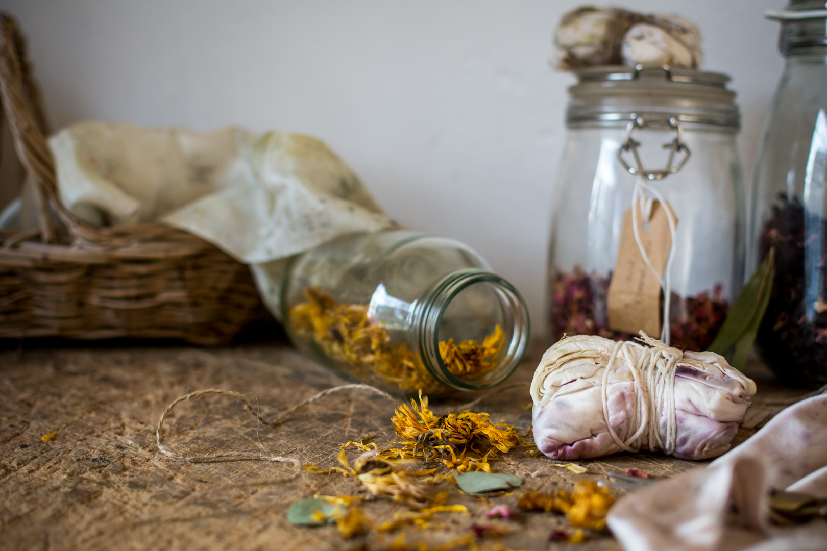 © silkie Lloyd | Botanical Inks Bundle Dyeing Workshop6.jpg