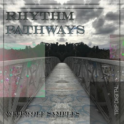 0149-180308-rhythmpathways.jpeg