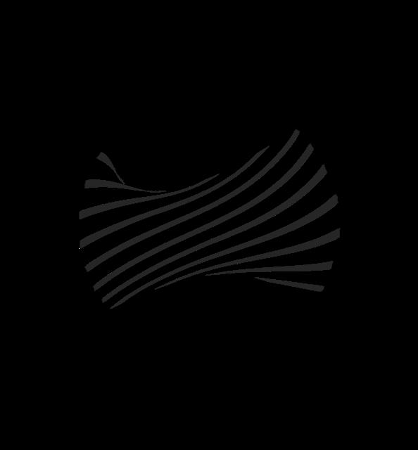 Fasor Records logo copy.png