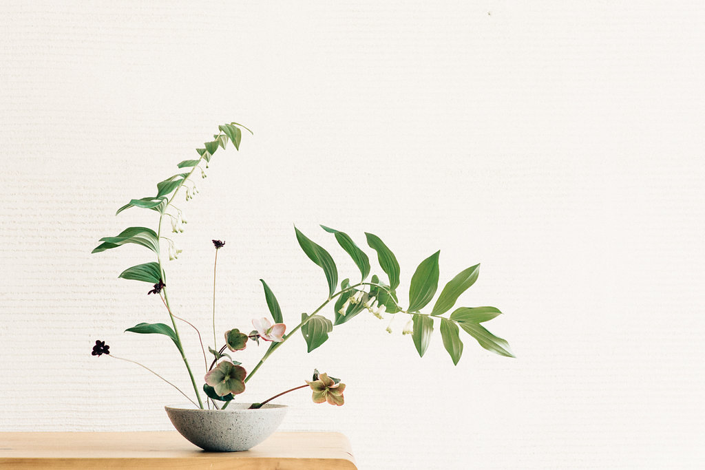 Japanese Ikebana Editorial