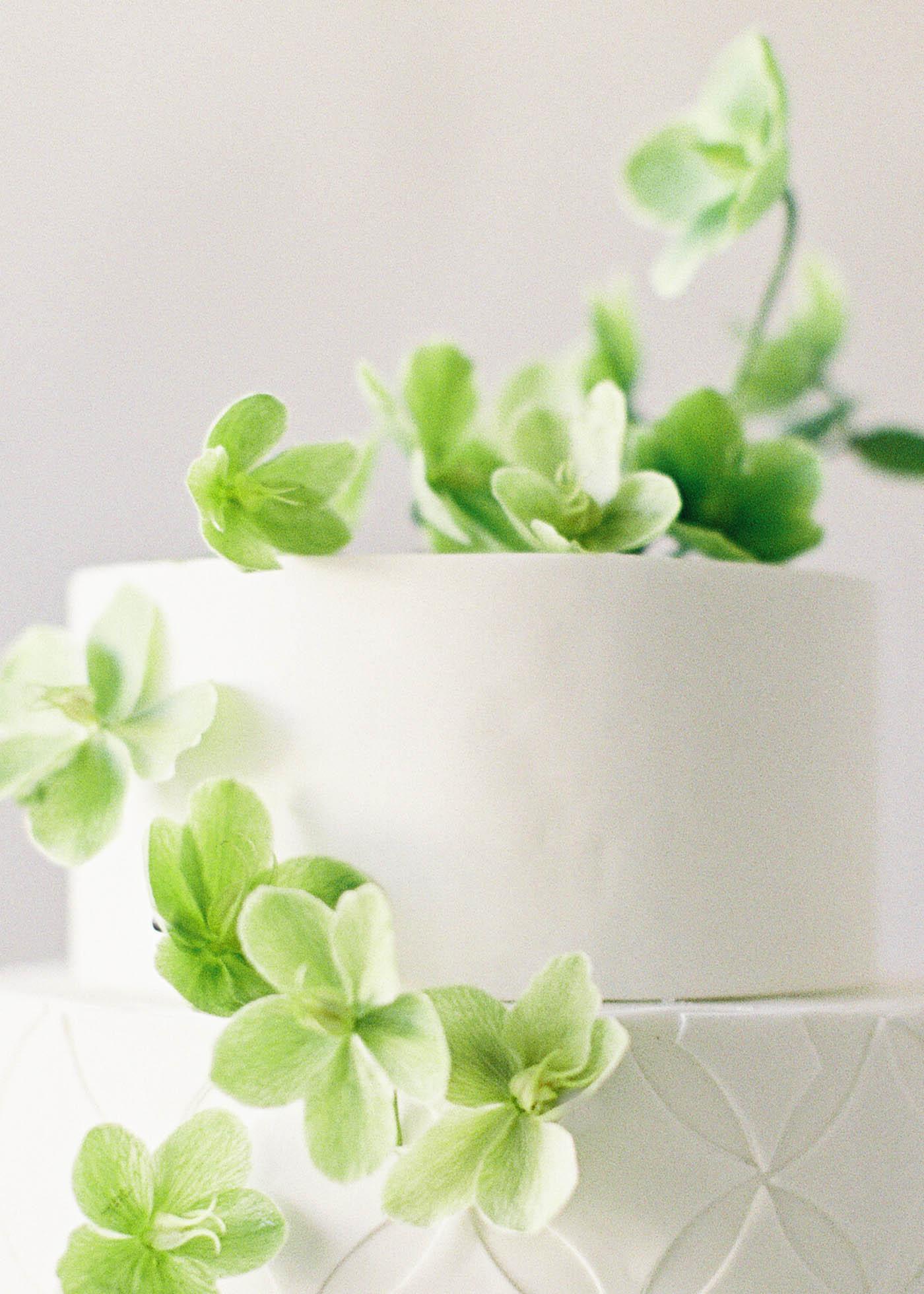 Cake-Favorites-17-Jen_Huang-000486-R1-049-23.jpg