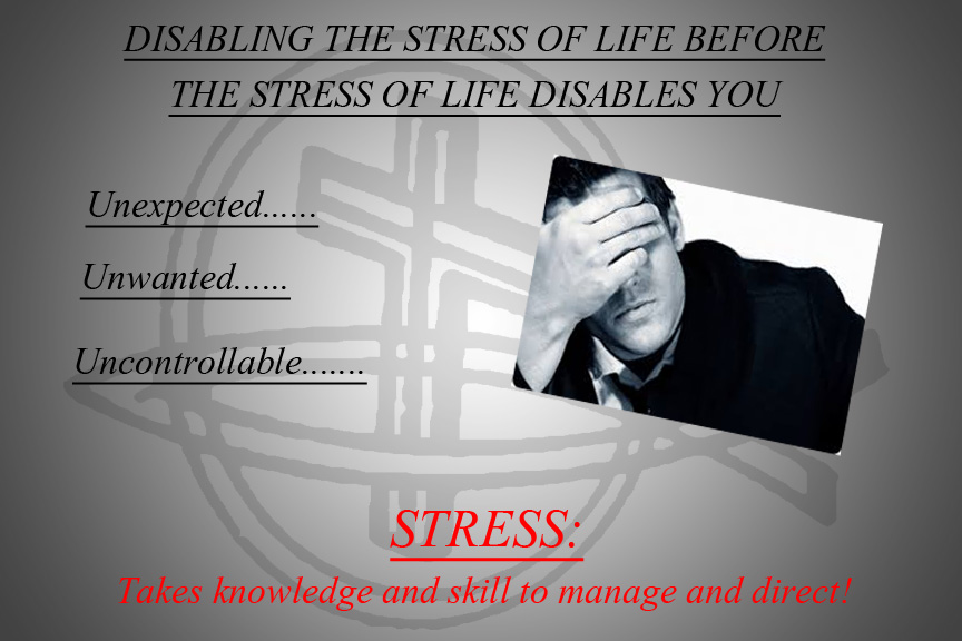 "Click Here to view ""Stress of Life"" powerpoint"