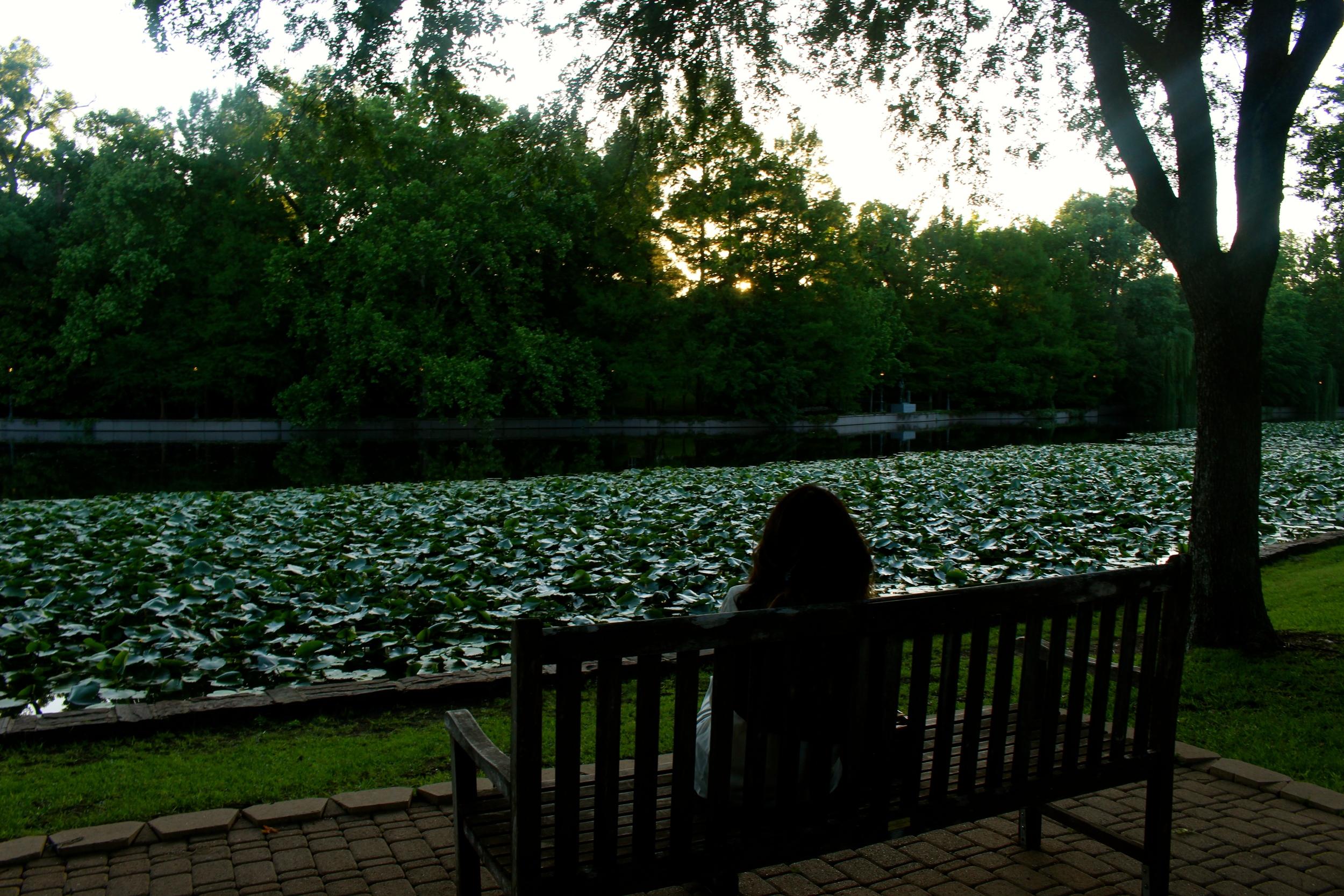 Dallas Travel Guide by Miami Lifestyle Blogger Zeinab Kristen