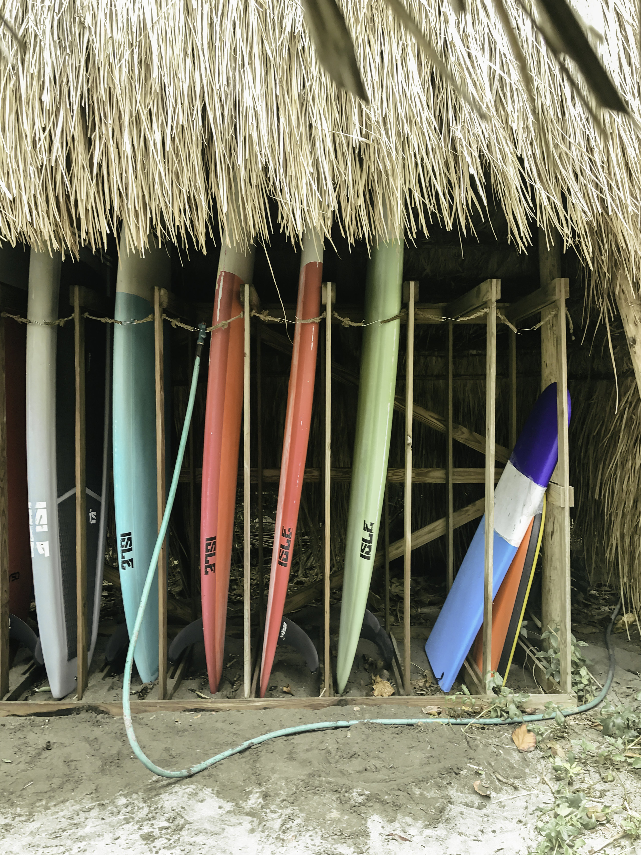 paddle boards at isla palenque