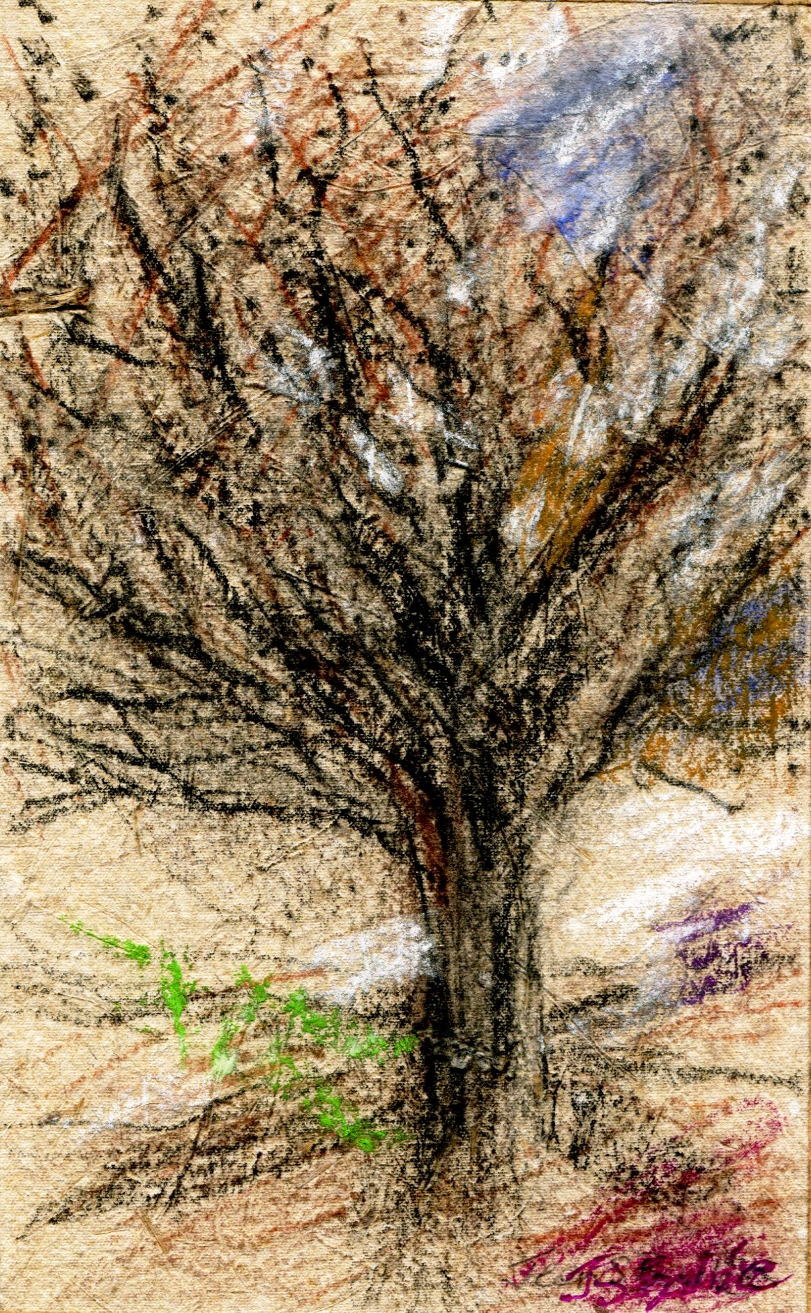 30A JEAN STEWART BAILIE, SIGNS OF SPRING 1, MIXED MEDIA ON HANDMADE PAPER