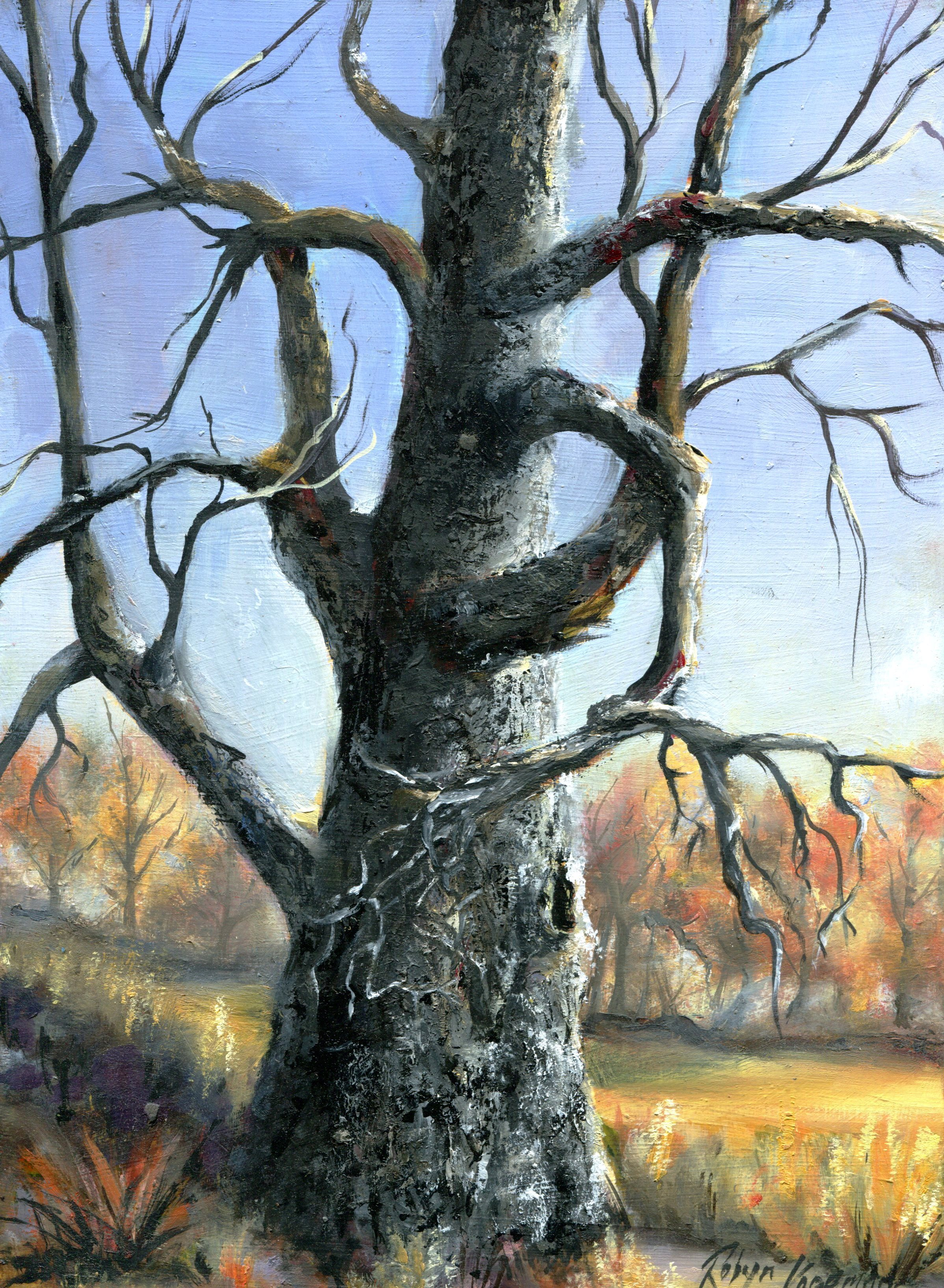 62A ROBYN KOOPMAN, DEAD TREE IN AUTUMN, OIL ON BOARD