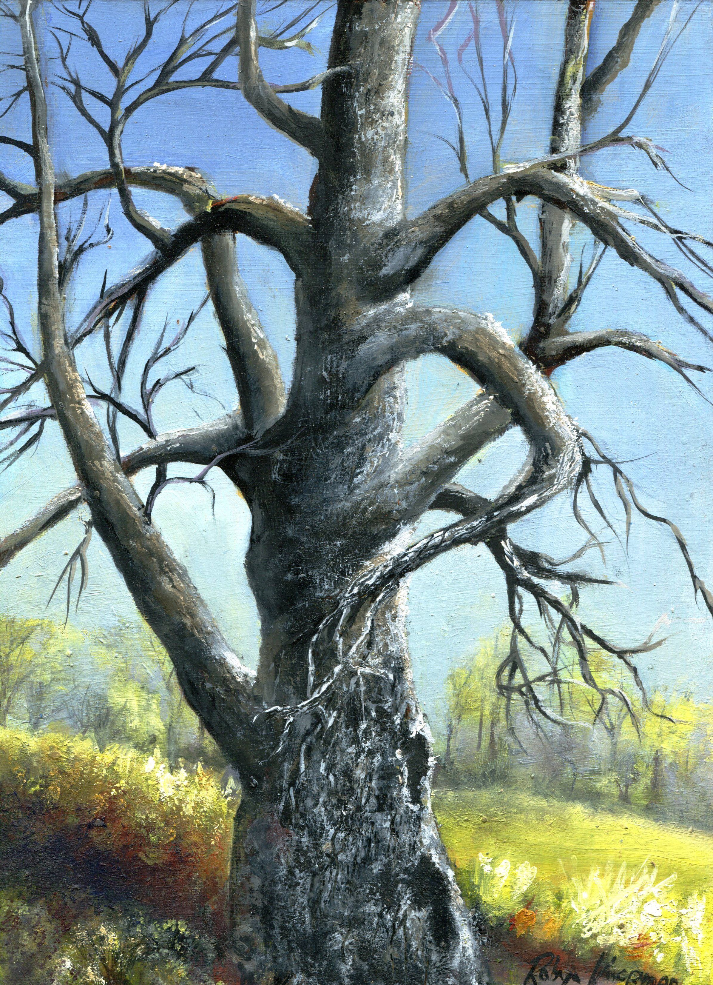 62C ROBYN KOOPMAN, DEAD TREE IN SPRING, OIL ON BOARD