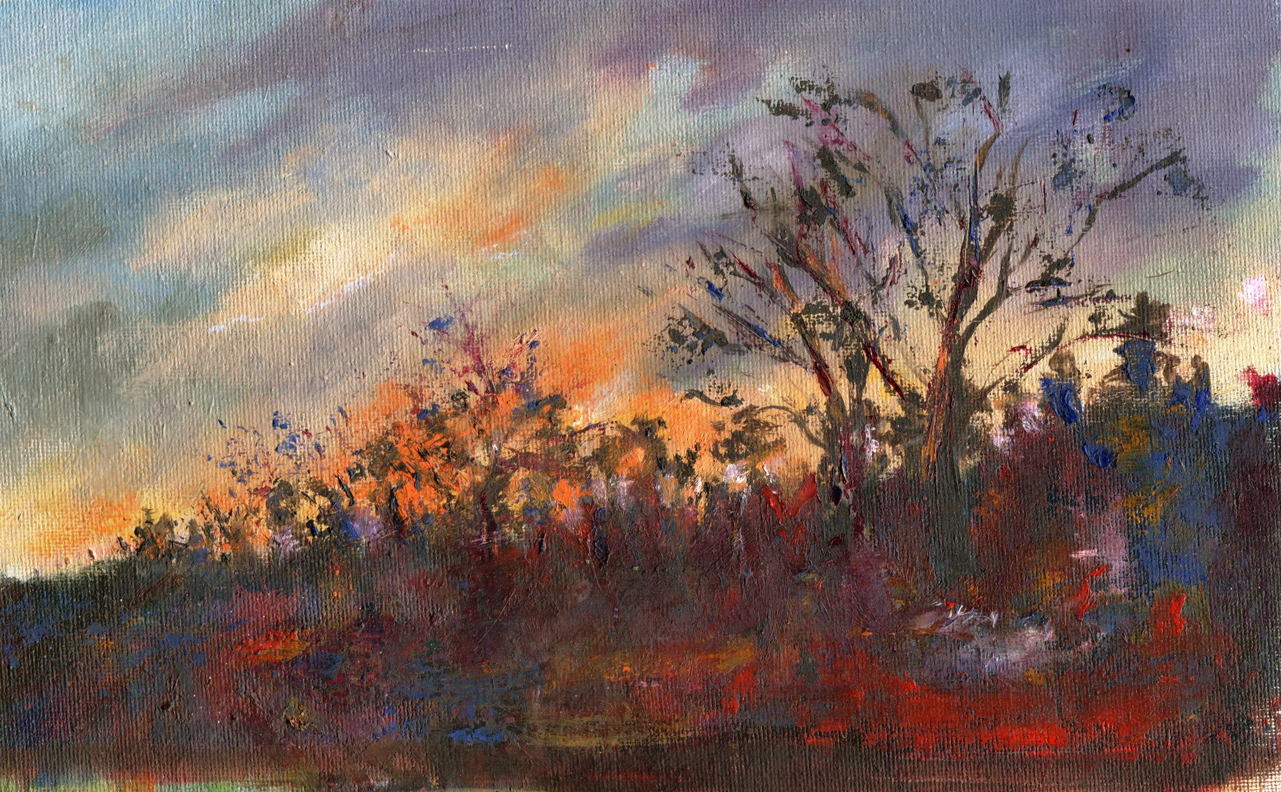 63C VICKY CRESSEY, FIERY EVENING, OIL ON CANVAS