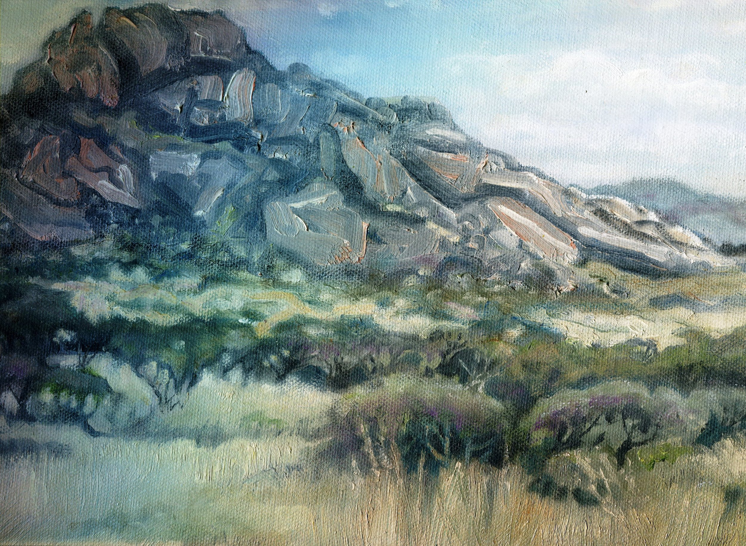 81C JENNY HALLOWES, KAROO KOPPIE, OIL ON CANVAS