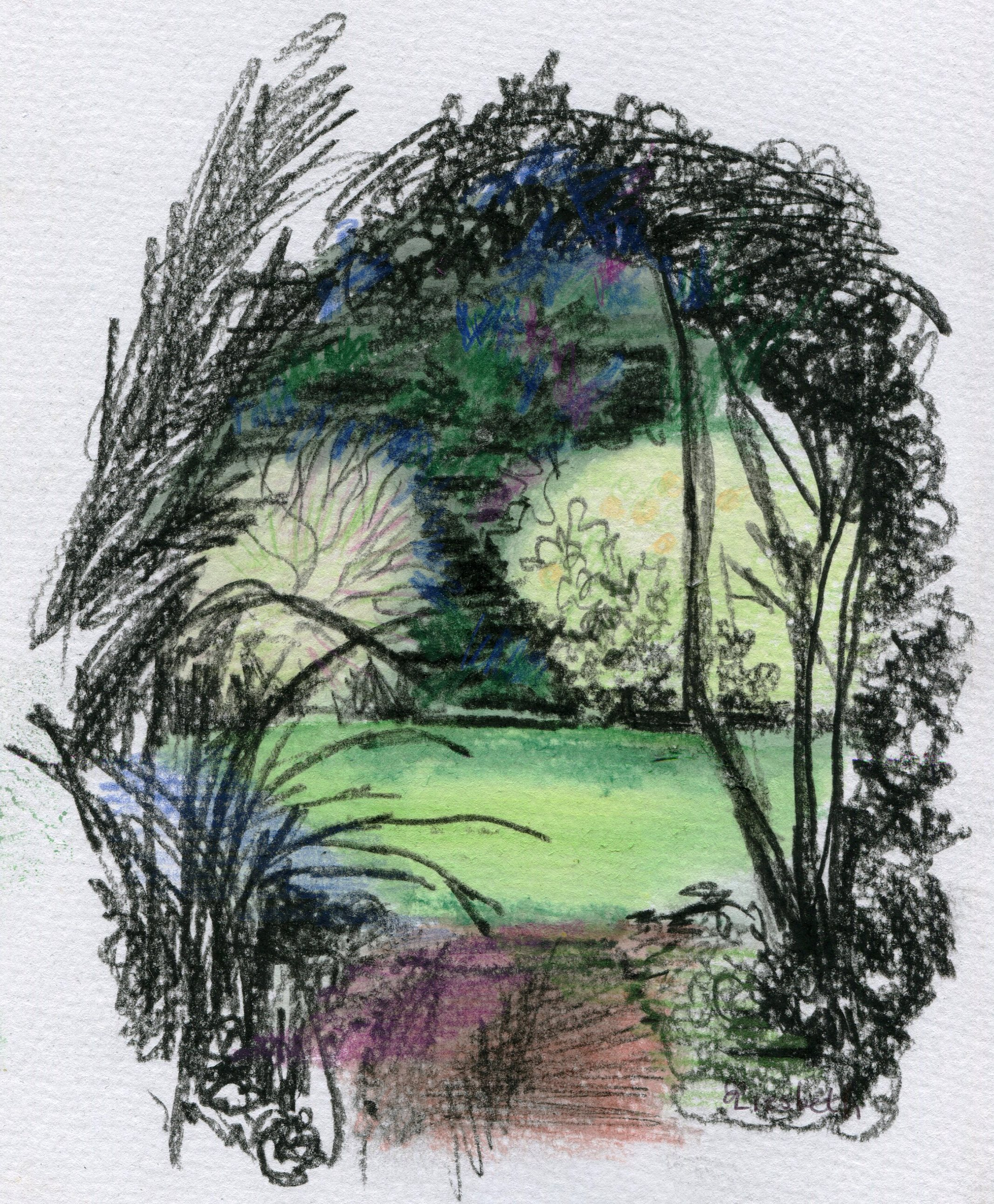 85A LIESBETH GROENEWALD, GARDEN'S EYE, WATERCOLOUR, PENCIL & CHARCOAL ON PAPER