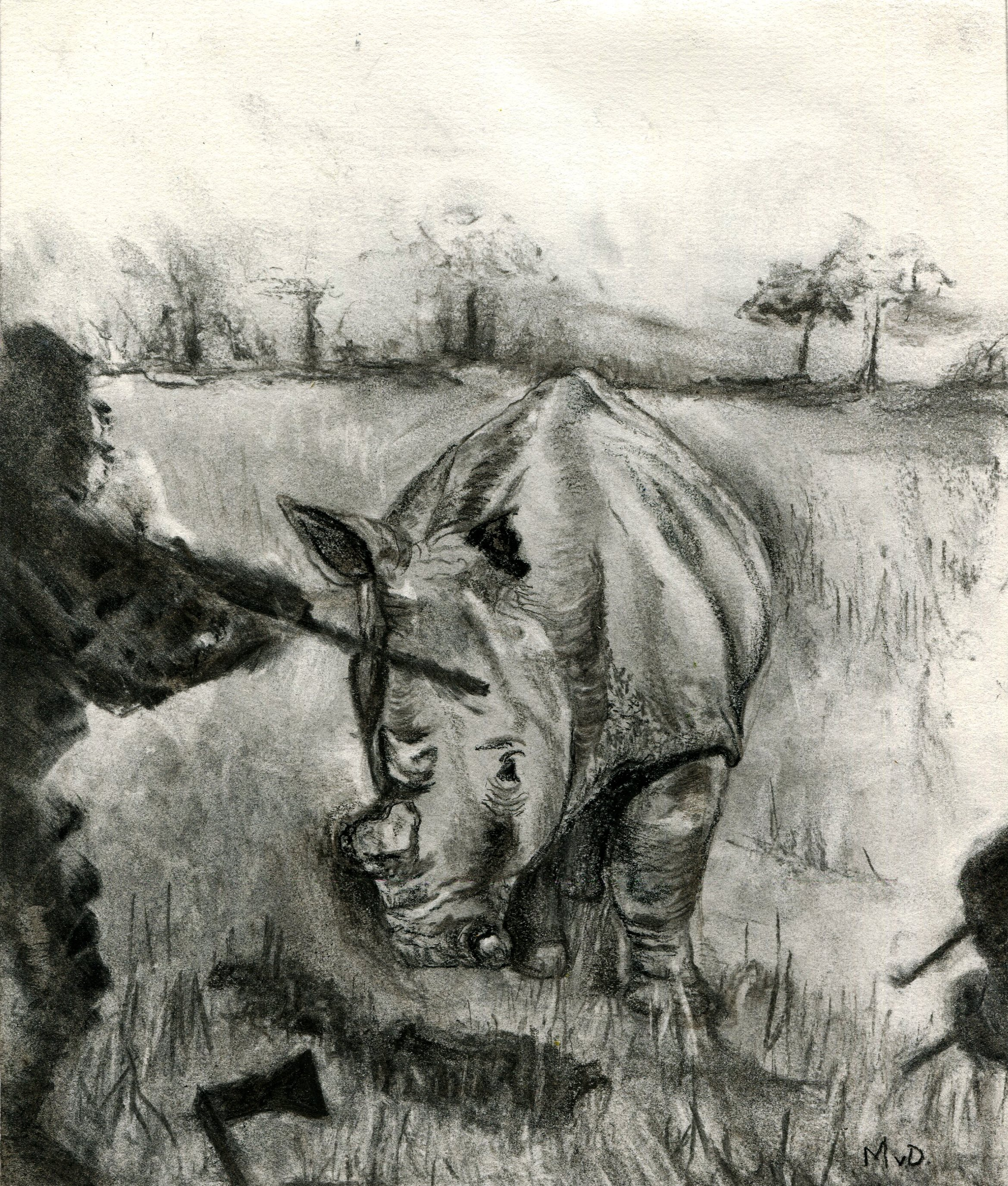 89A MONIQUE VAN DEVENTER, UNTITLED, CHARCOAL ON PAPER