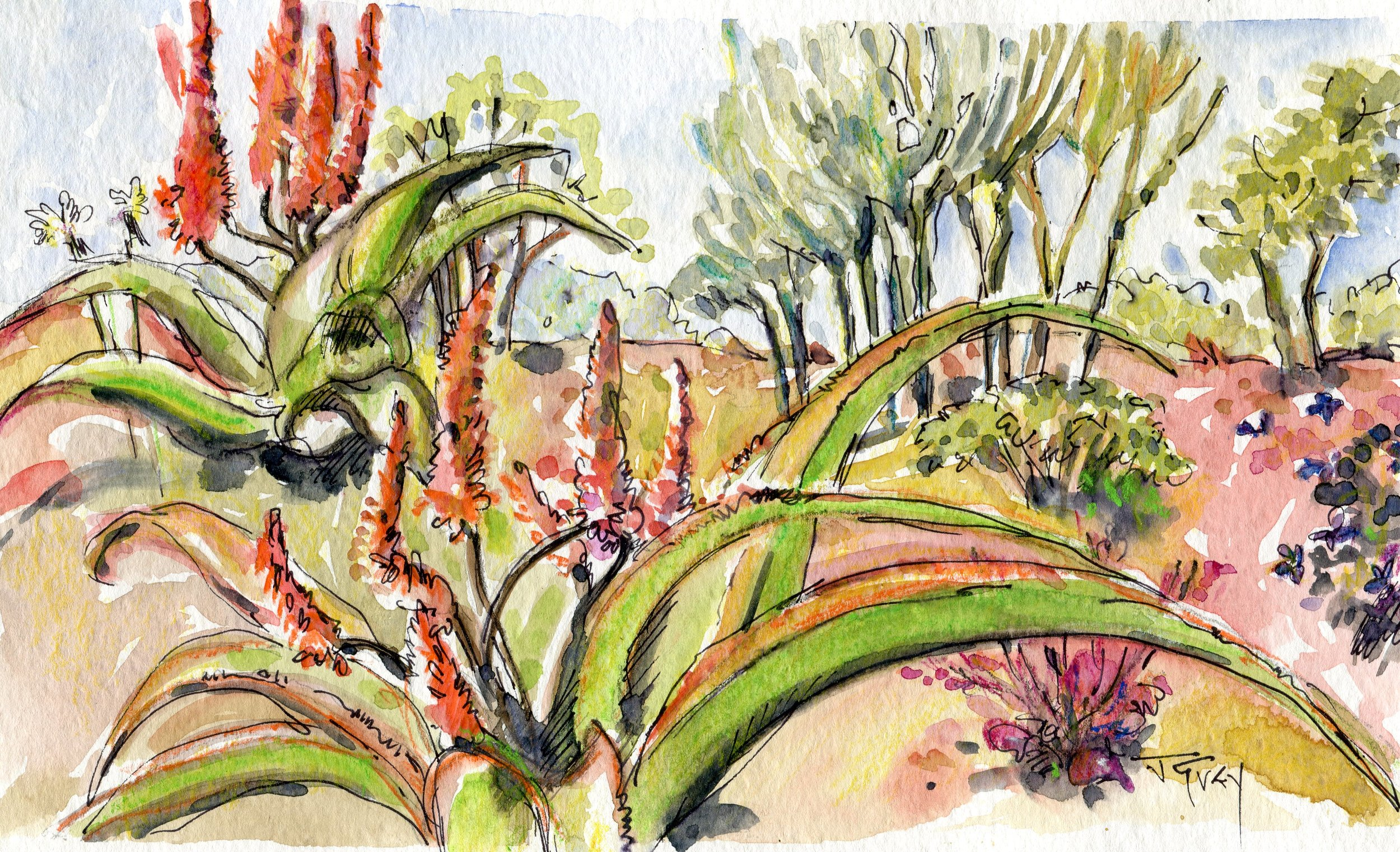 09c  Juliet Grey  Bushveld jewels  watercolour and ink on paper