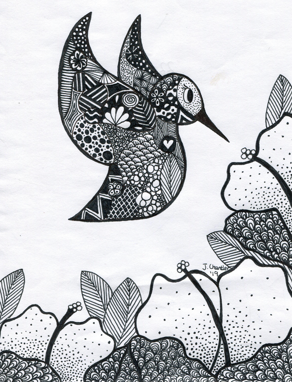22c  Jessica Chantler  Little bird  pen on paper