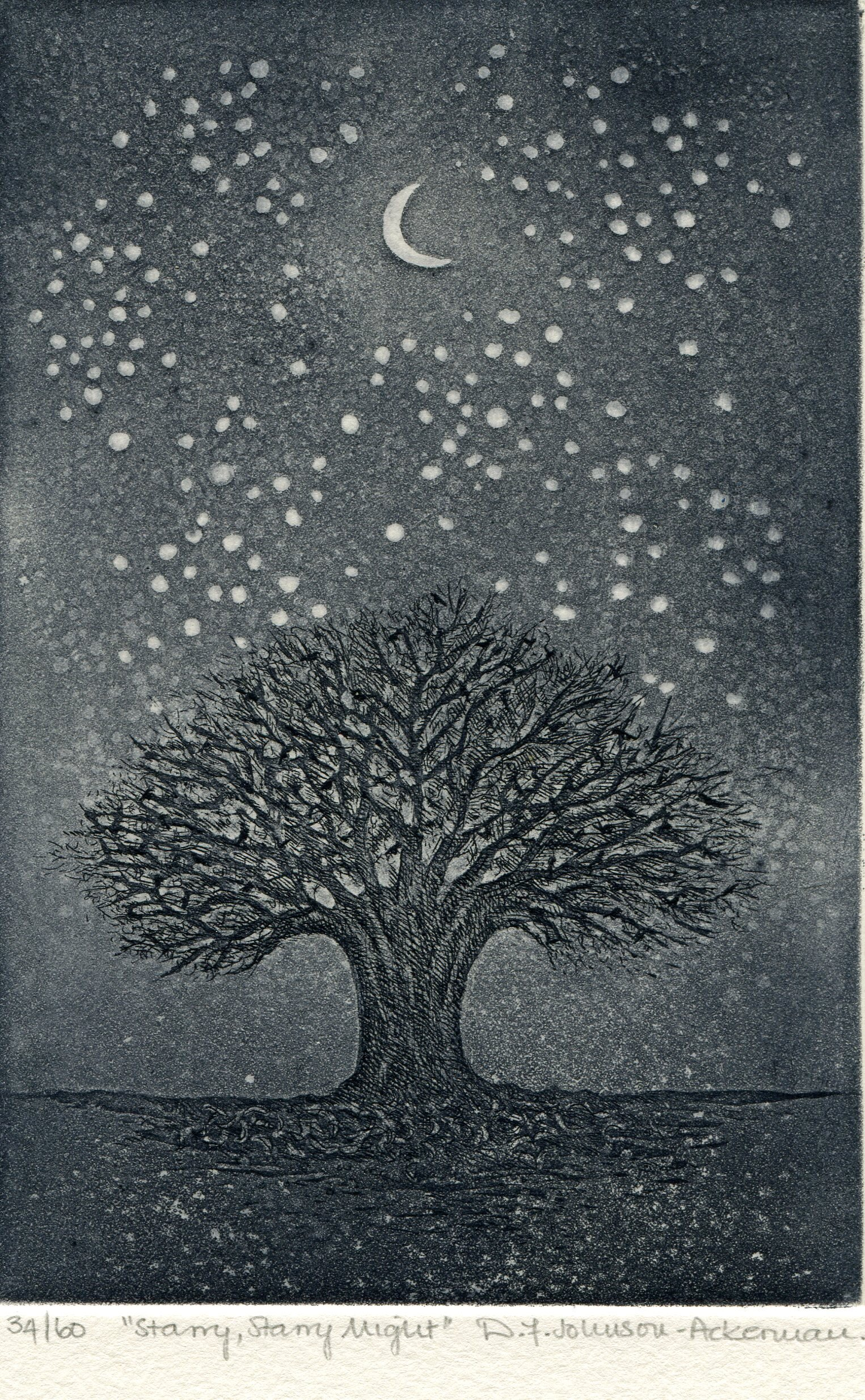 28a  Diane Johnson-Ackerman  Starry starry night  etching on paper