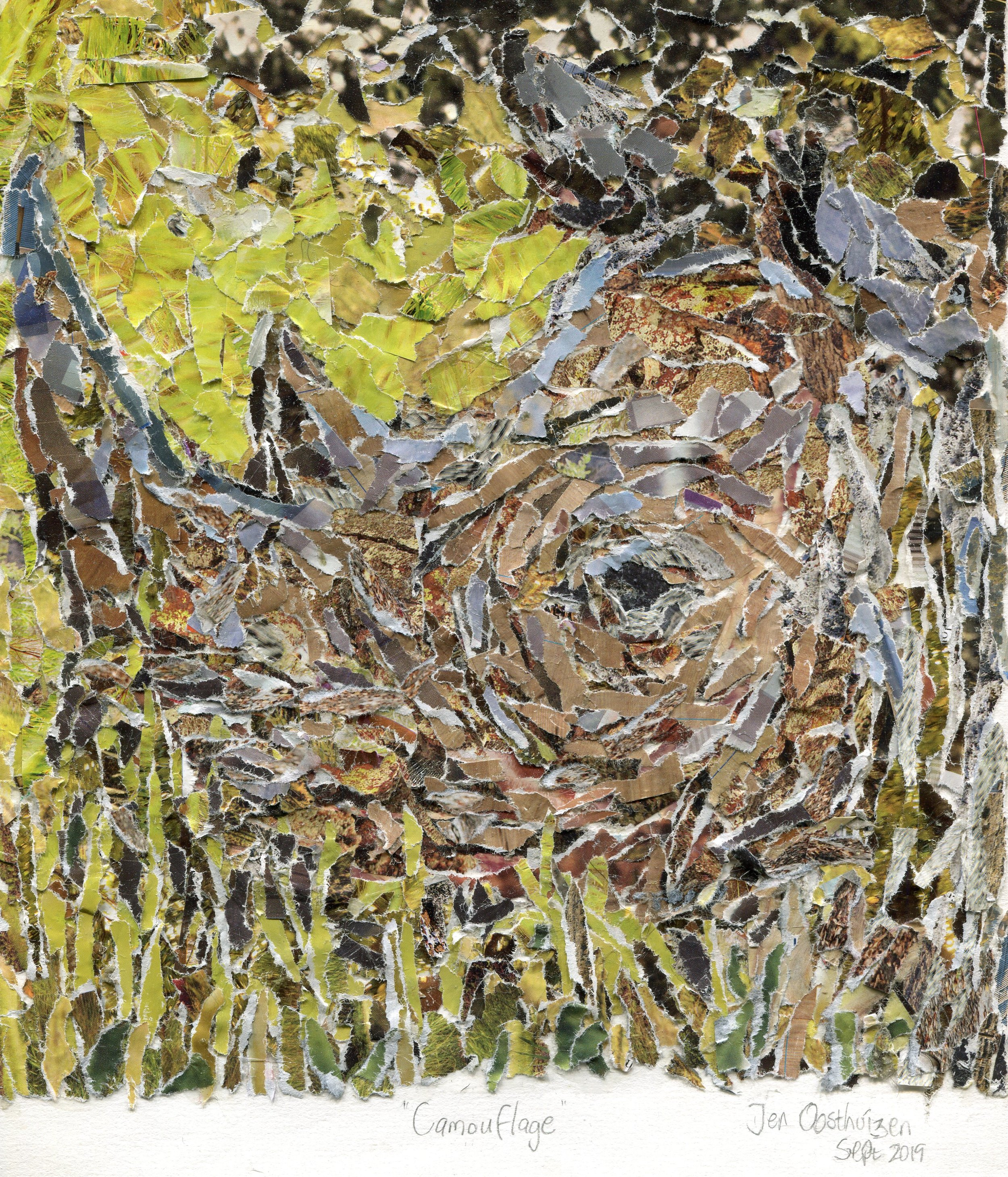 36a  Jen Oosthuizen  Camouflage  paper collage on paper