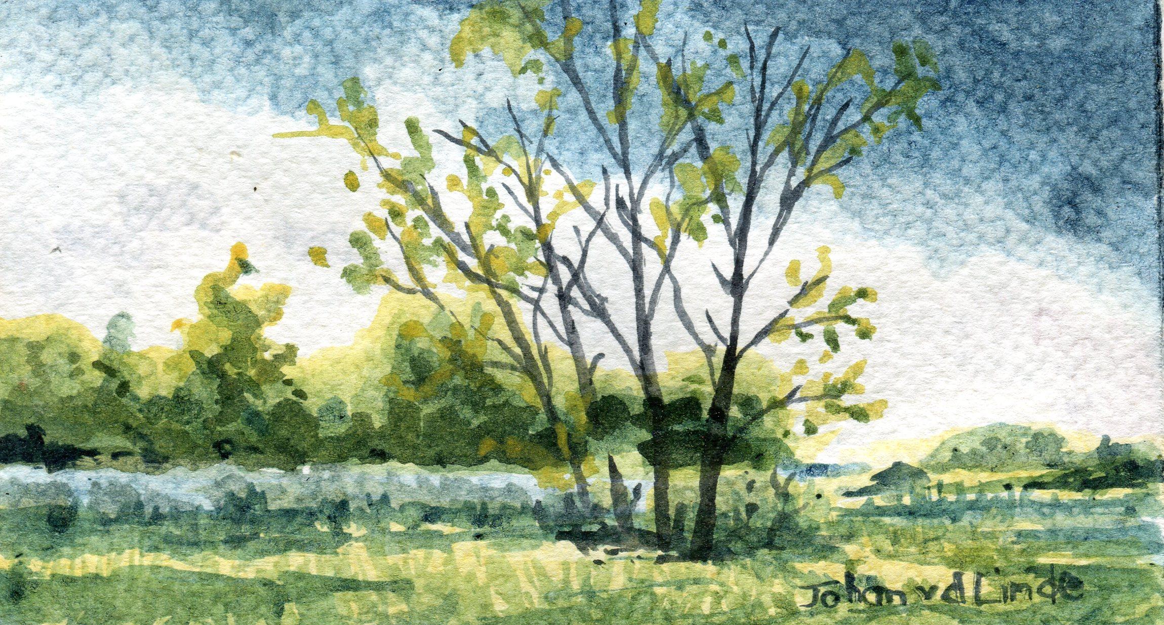 40b  Johan van der Linde  Trees- Symmonds Lane, Howick  watercolour on paper