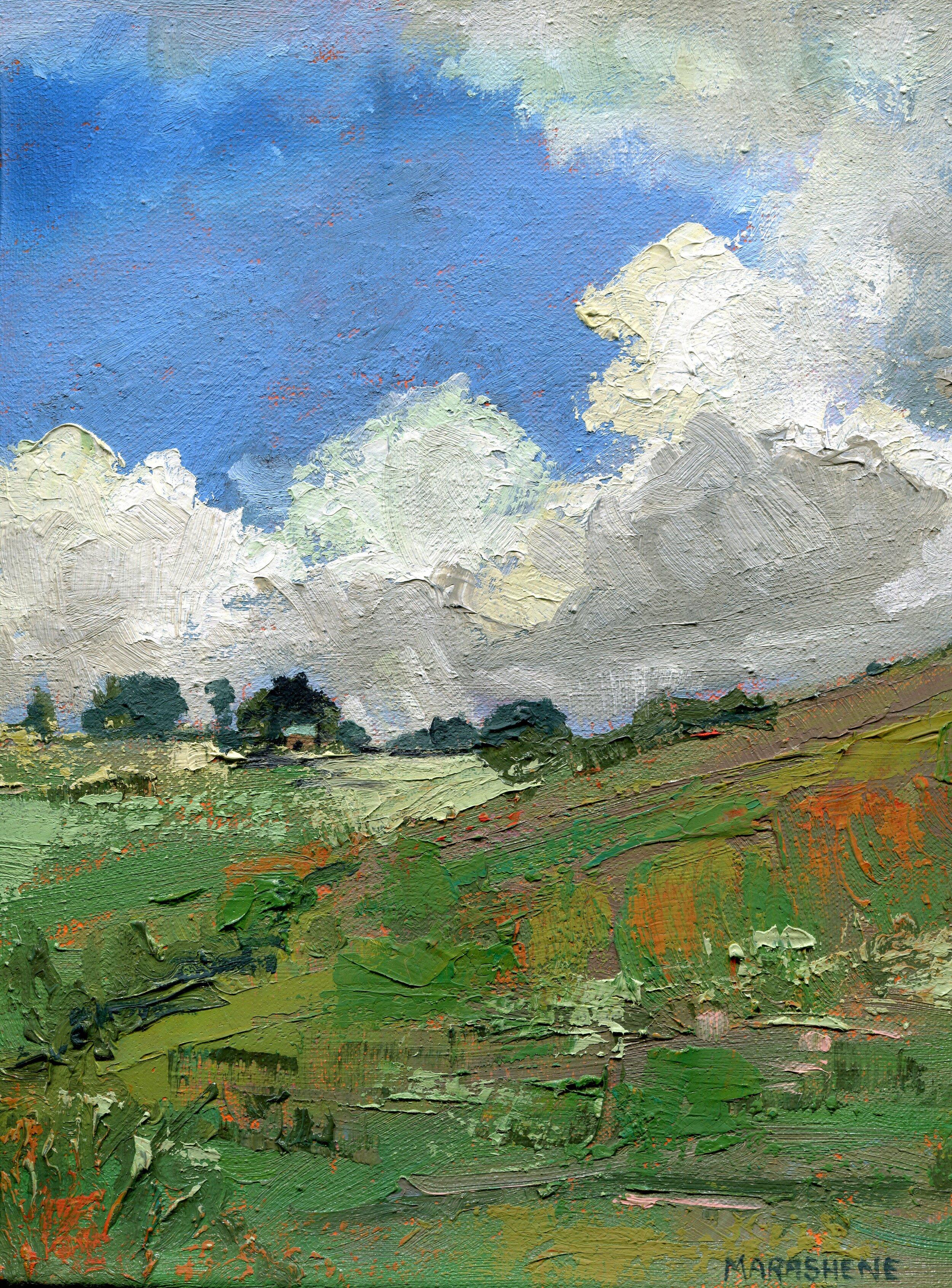 47a  Marasheen Lewis  Dargle landscape  oil on canvas