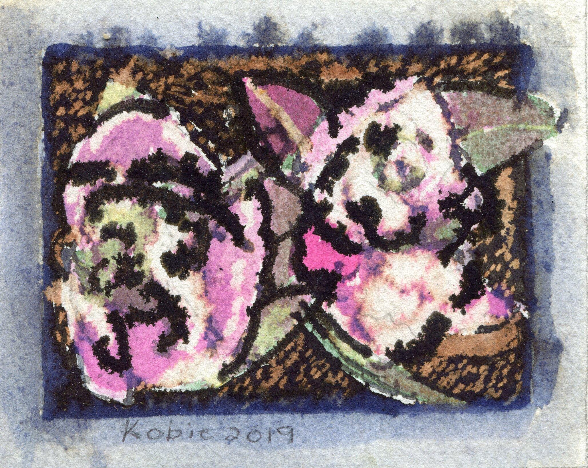 50b  Kobie Venter  Camellia 2  ink drawing on paper