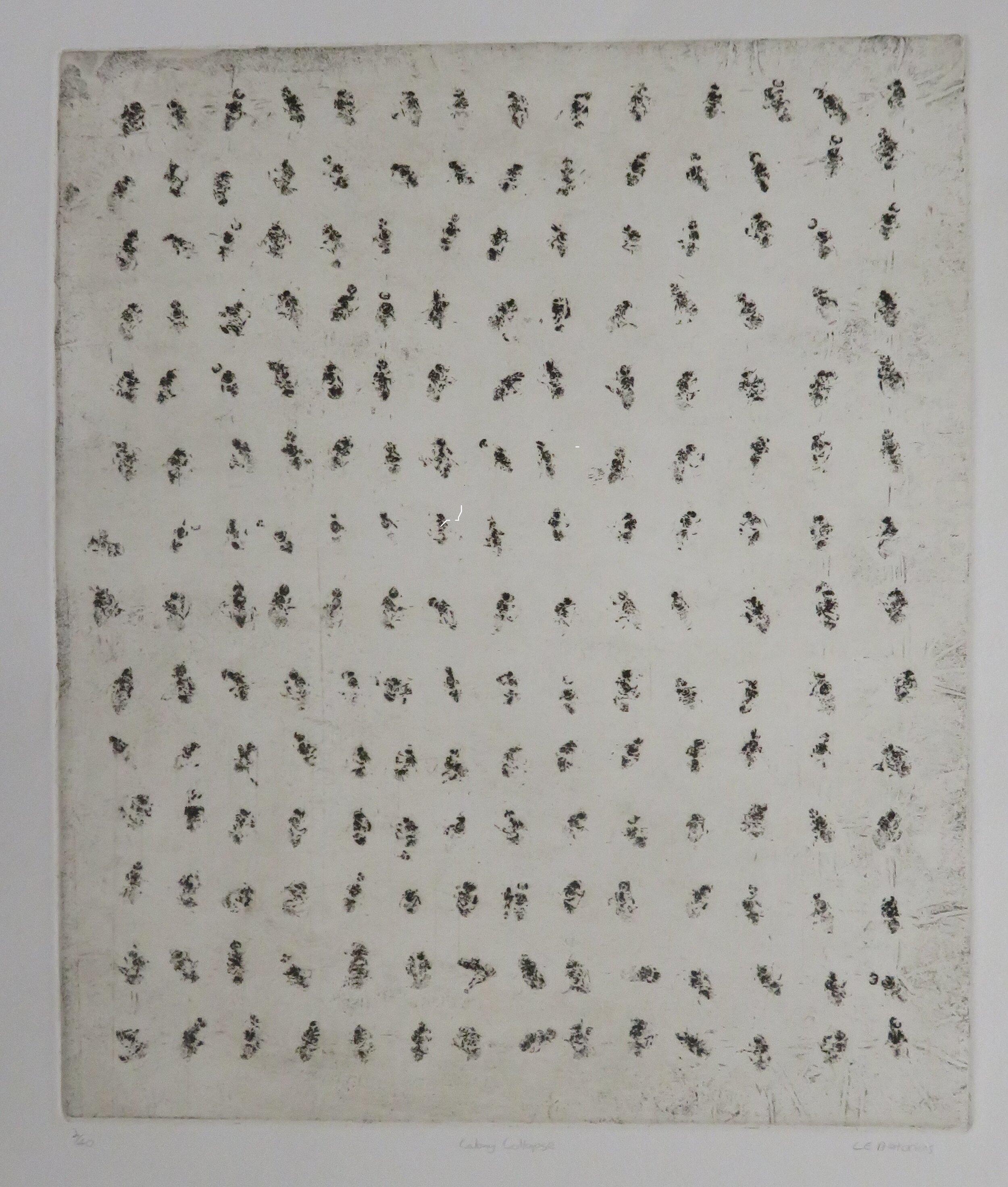 57b  Eloff Pretorius  Colony collapse  etching on paper