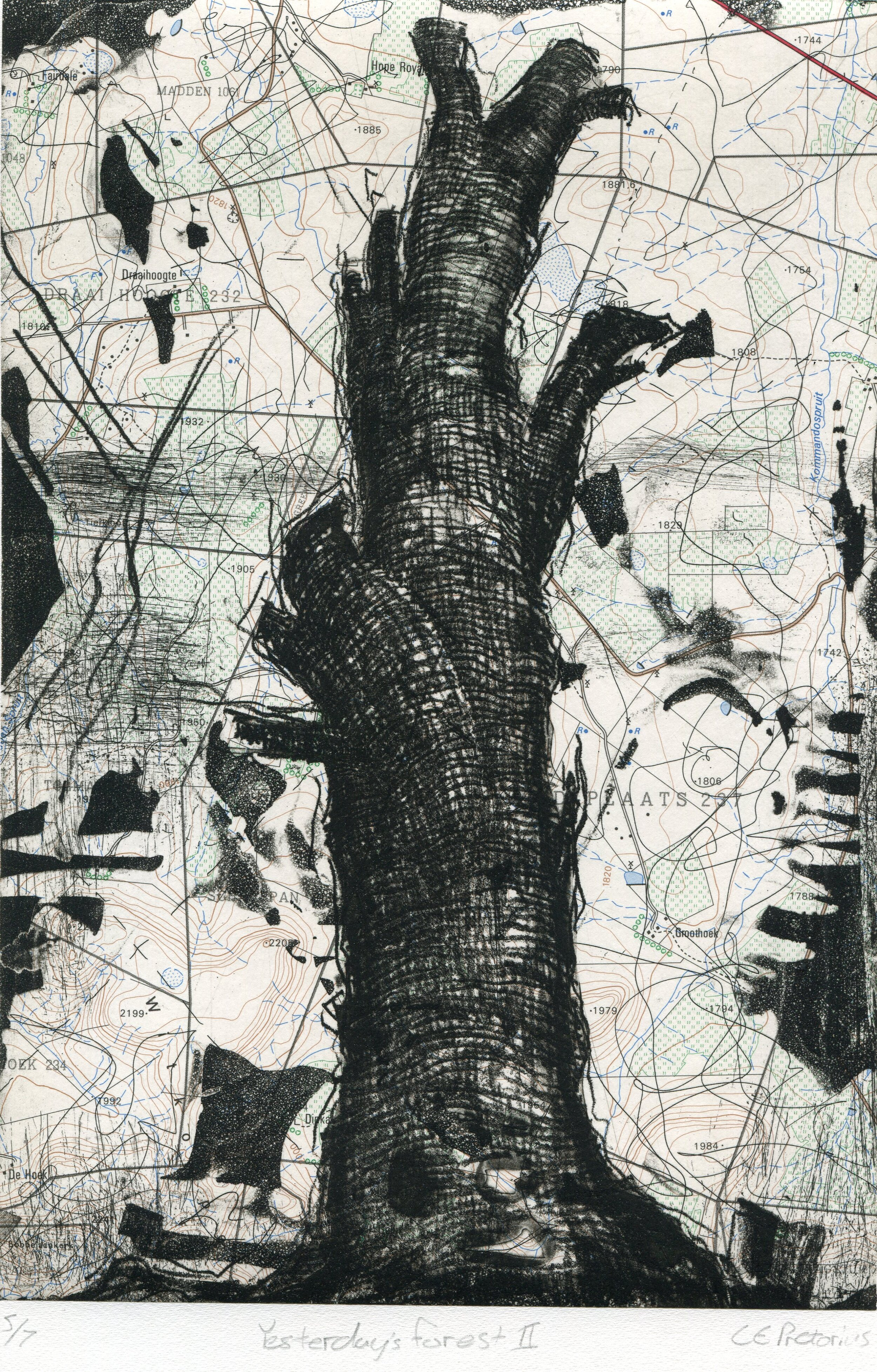 57d  Eloff Pretorius  Yesterday's forest 2  etching and chine-collee on paper