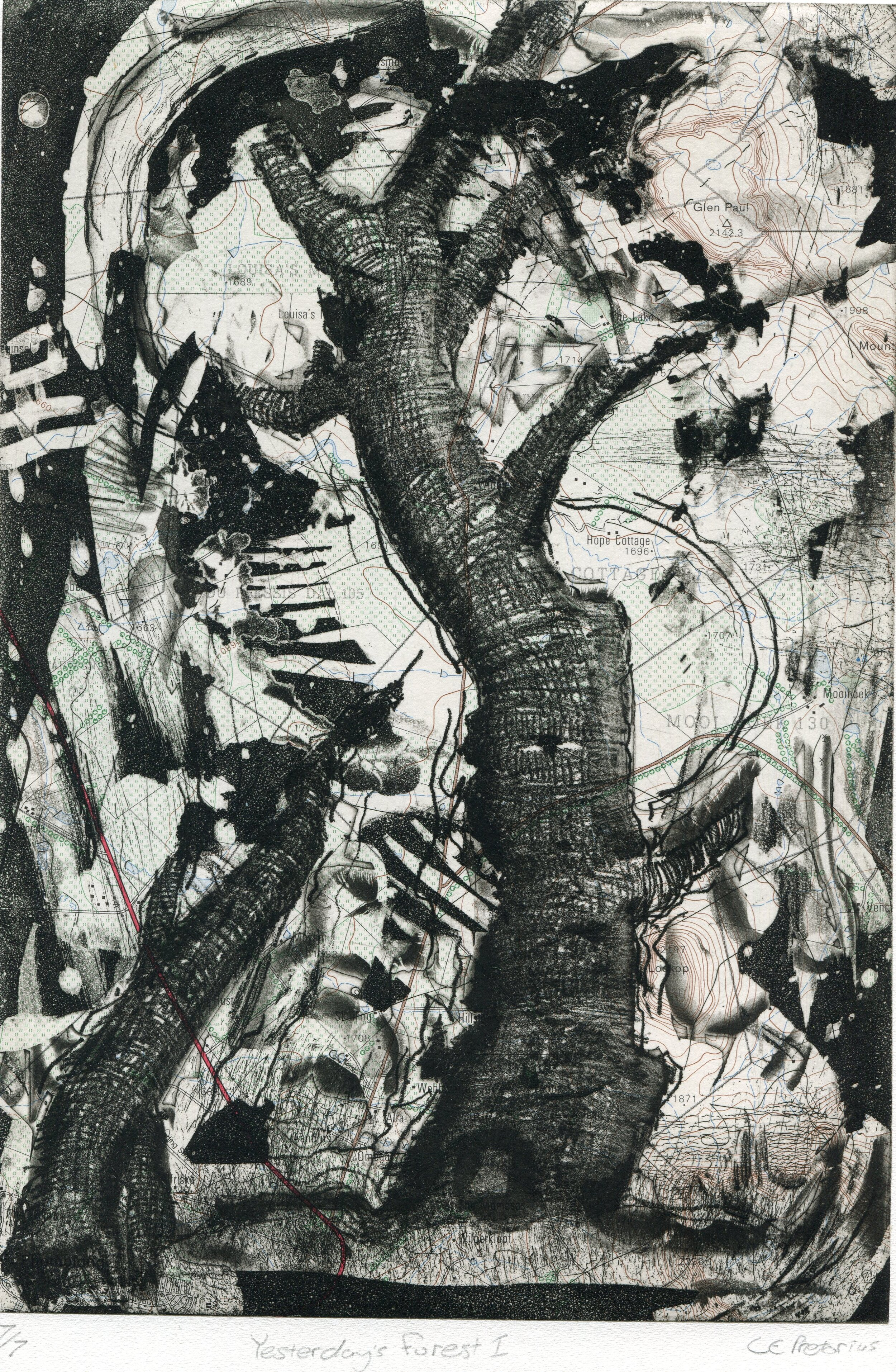 57c  Eloff Pretorius  Yesterday's forest 1  etching and chine-collee on paper