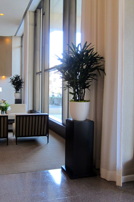 public-3930-n-pine-grove-lobby-plant-pedestal.jpg
