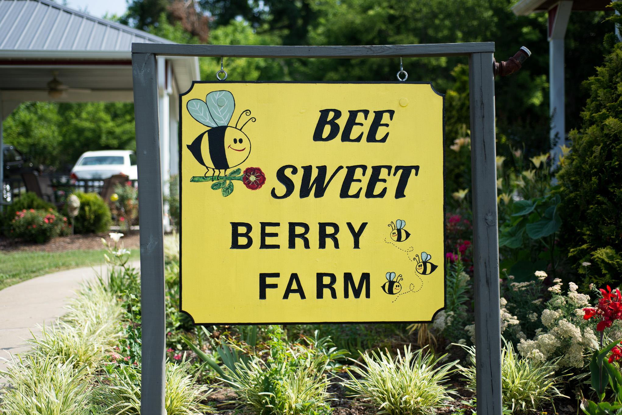 Bee Sweet Berry Farm Sign