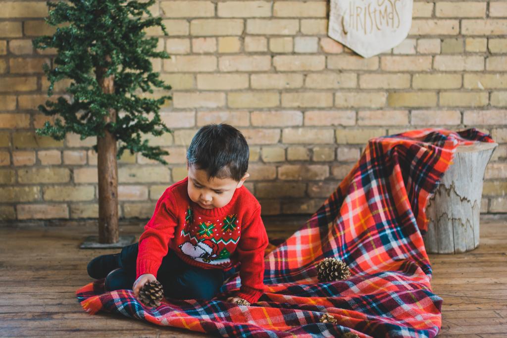 holidayminisessions_costudiobismarck-7.jpg