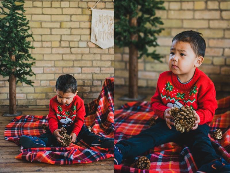 holidayminisessions_costudiobismarck2.jpg