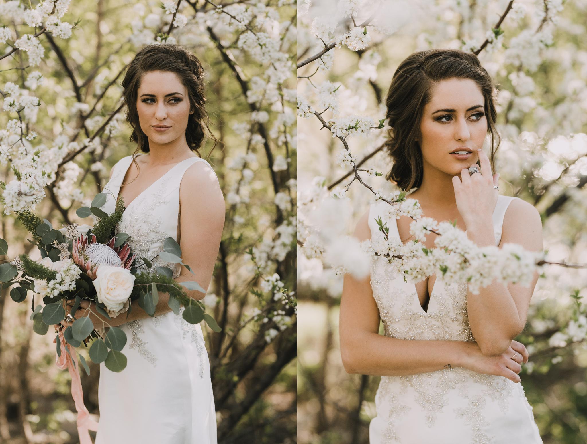 bismarck-fargo-wedding-photographer.png