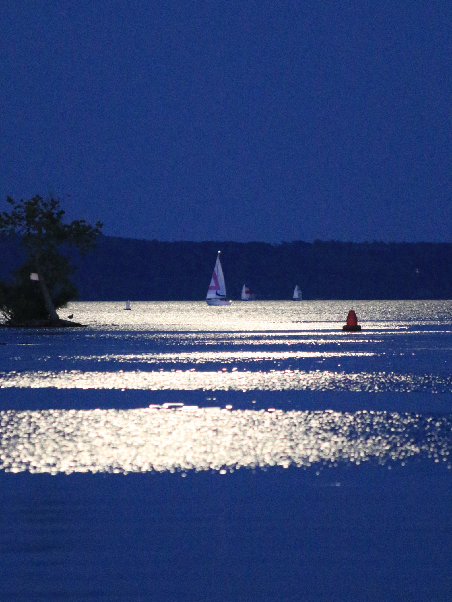 3650~COP~Sailing_On_The_Blue_Moon~Bruss~Louis~FVC.jpg