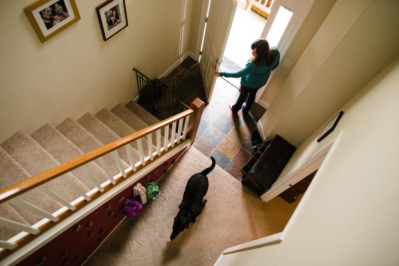 dog comes running inside when door opens