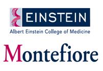 einsteinmonty logo.png