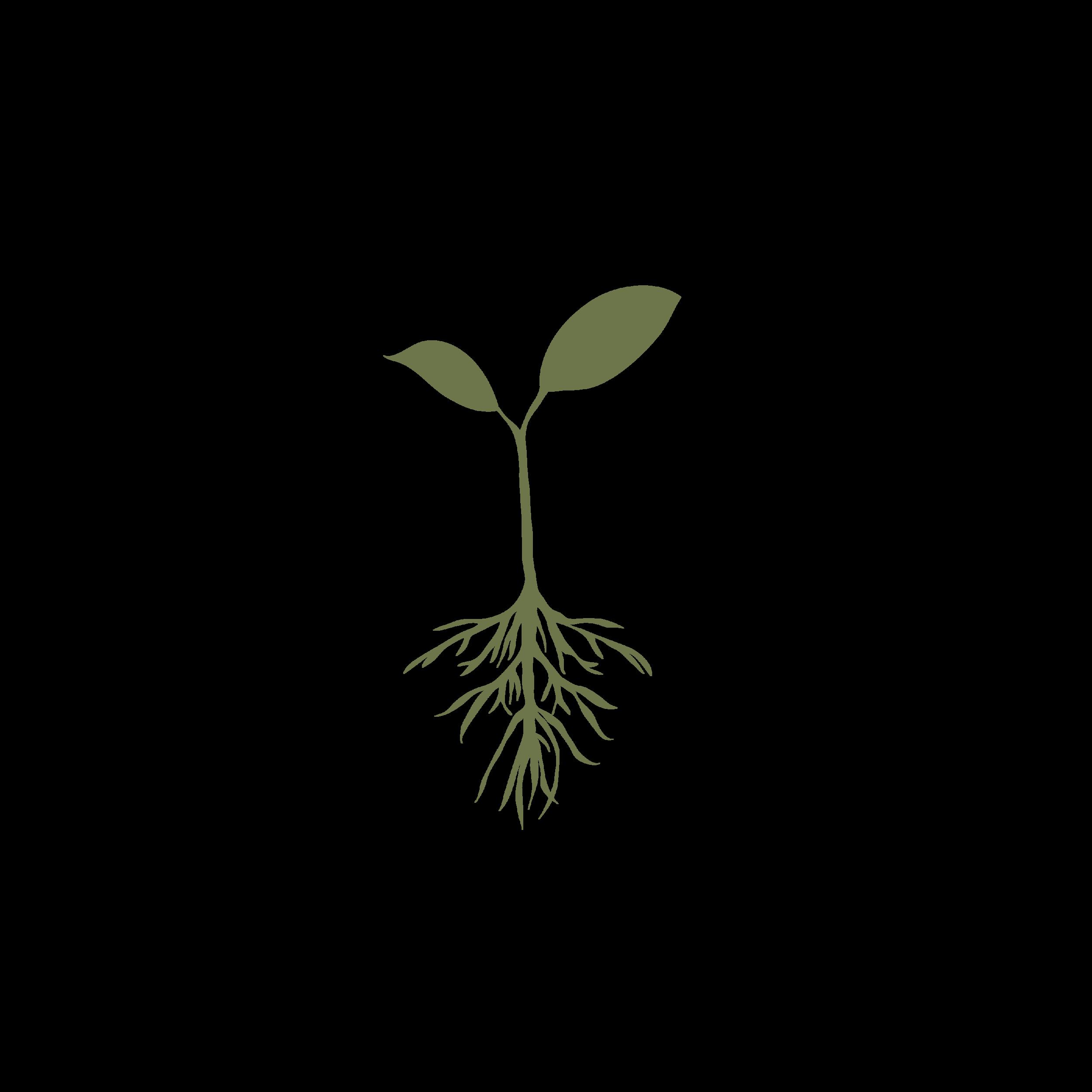 Drake-Carnahan-Logo2.png