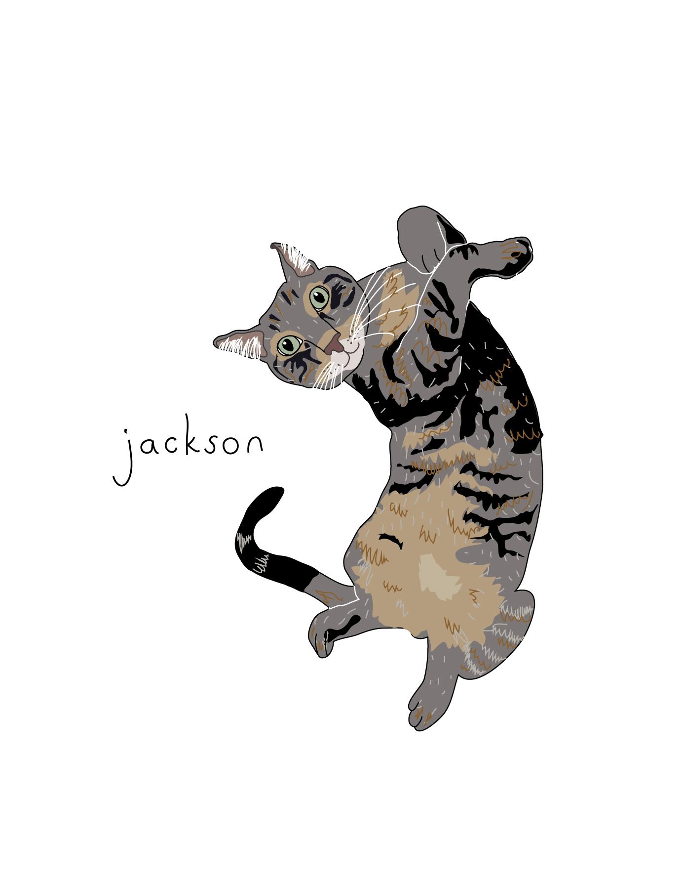 Karl-Hirsch-Jackson-Cat-Portrait.jpg