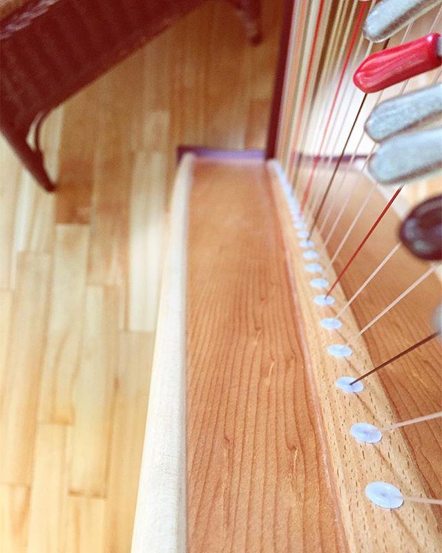 👁Wood grain 👁🍁🌲#woodworking #handmade #musicalinstrument @lyonhealyharps