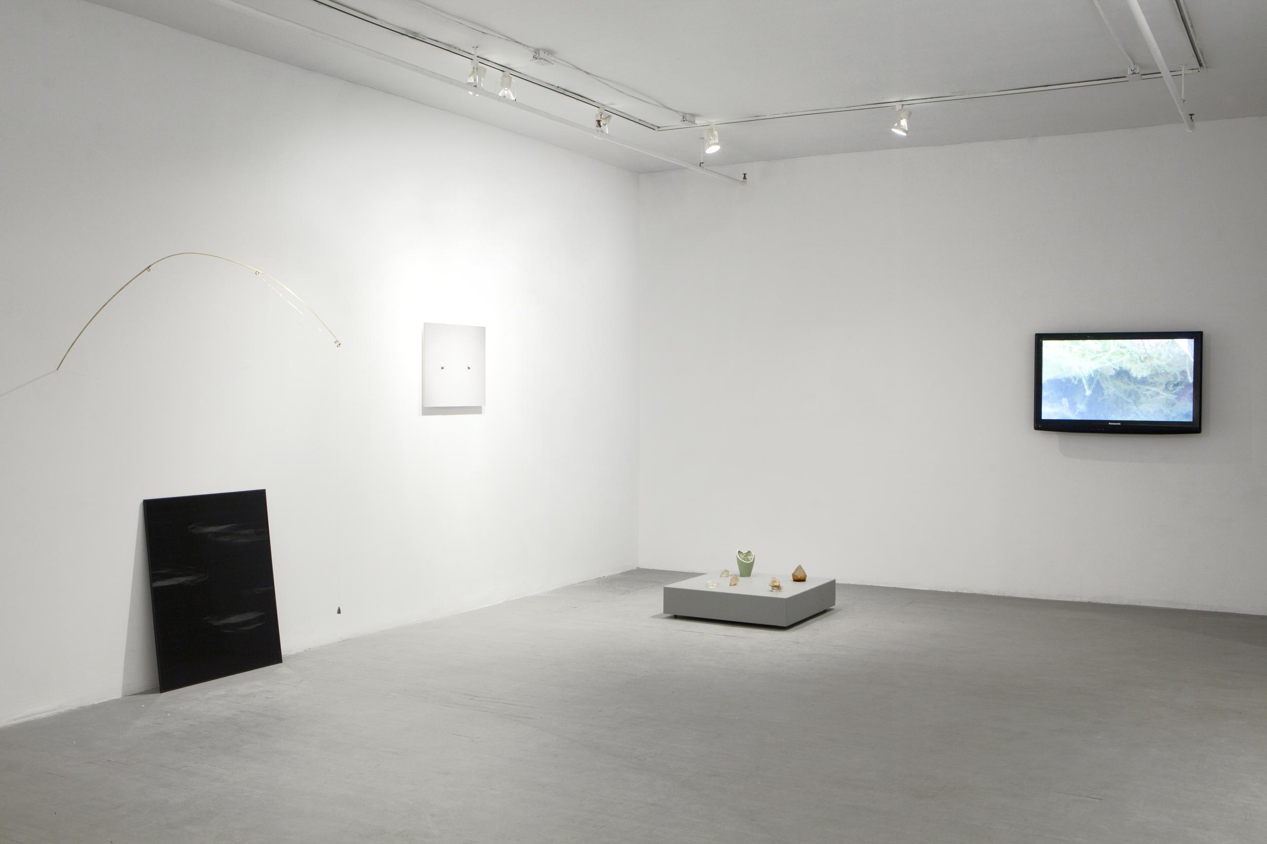 à l'ombre de mouche, 2014, installation view at Les Territoires