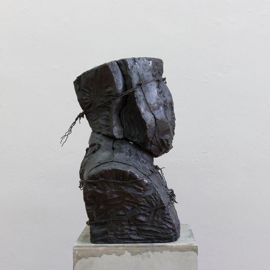 Terror 1 , 2016, Bronze and metal wire, 75 x 60 x 30 centimeters