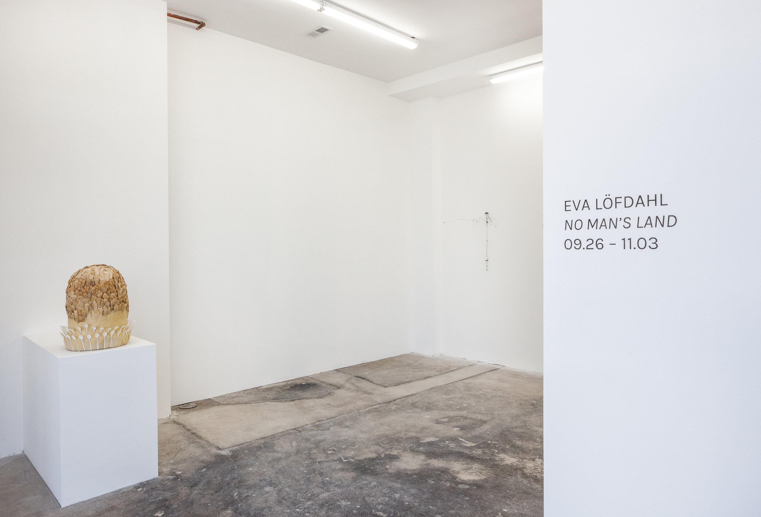 Installation view,  No Man's Land,  2018, Efrain Lopez Gallery, Chicago