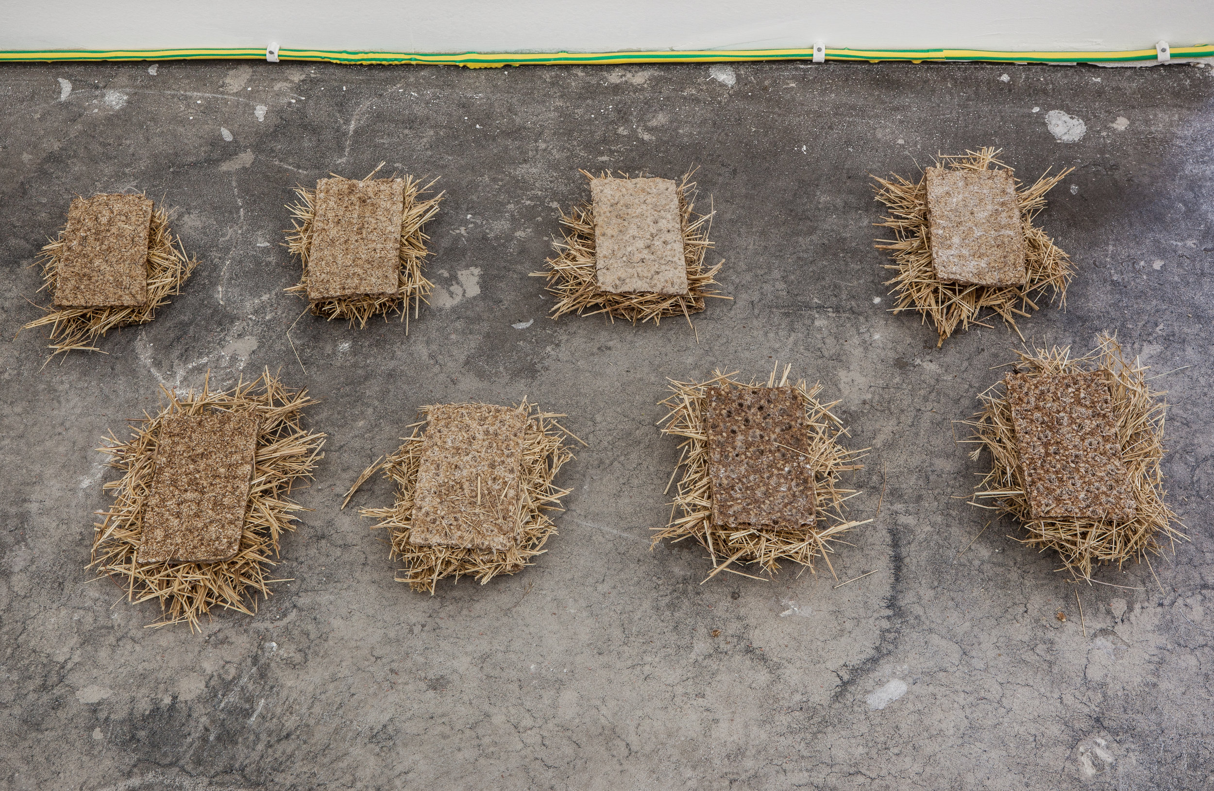 Eternal Sunshine , 2018, Straw mulch, crispbread, 8 part 40.64 x 71.12 cm