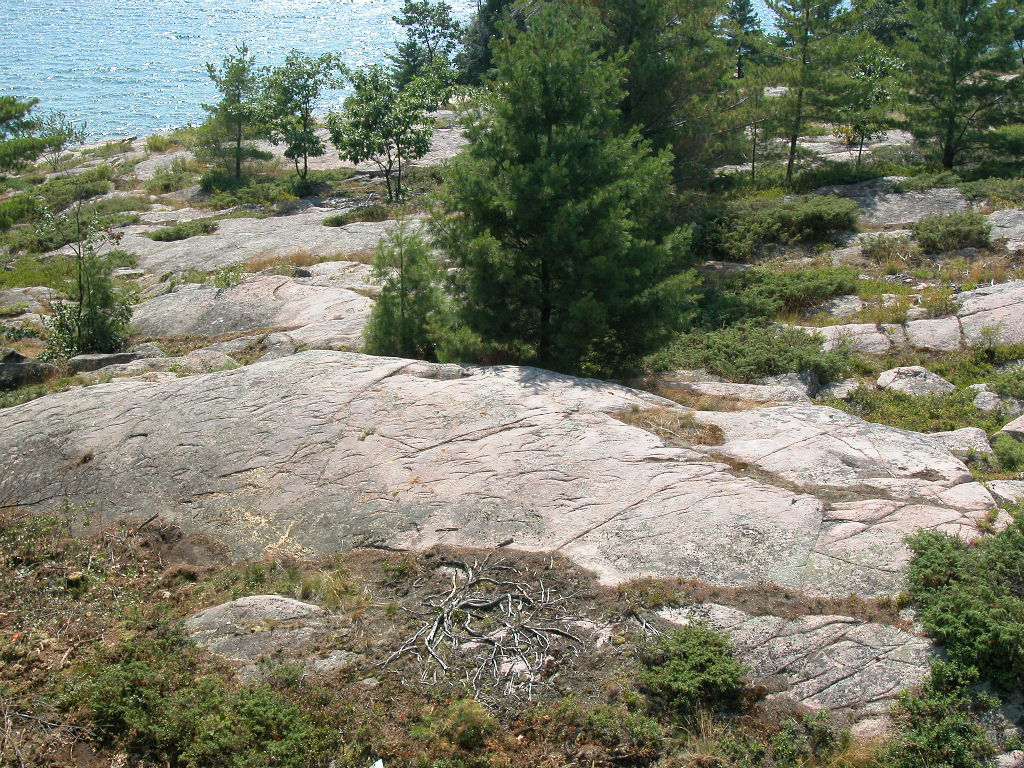 """You can see the """"chattermarks"""" of boulders scraping across Killbear's rocks under the immense weight of the glaciers."""