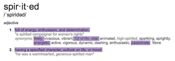 spirited define.png