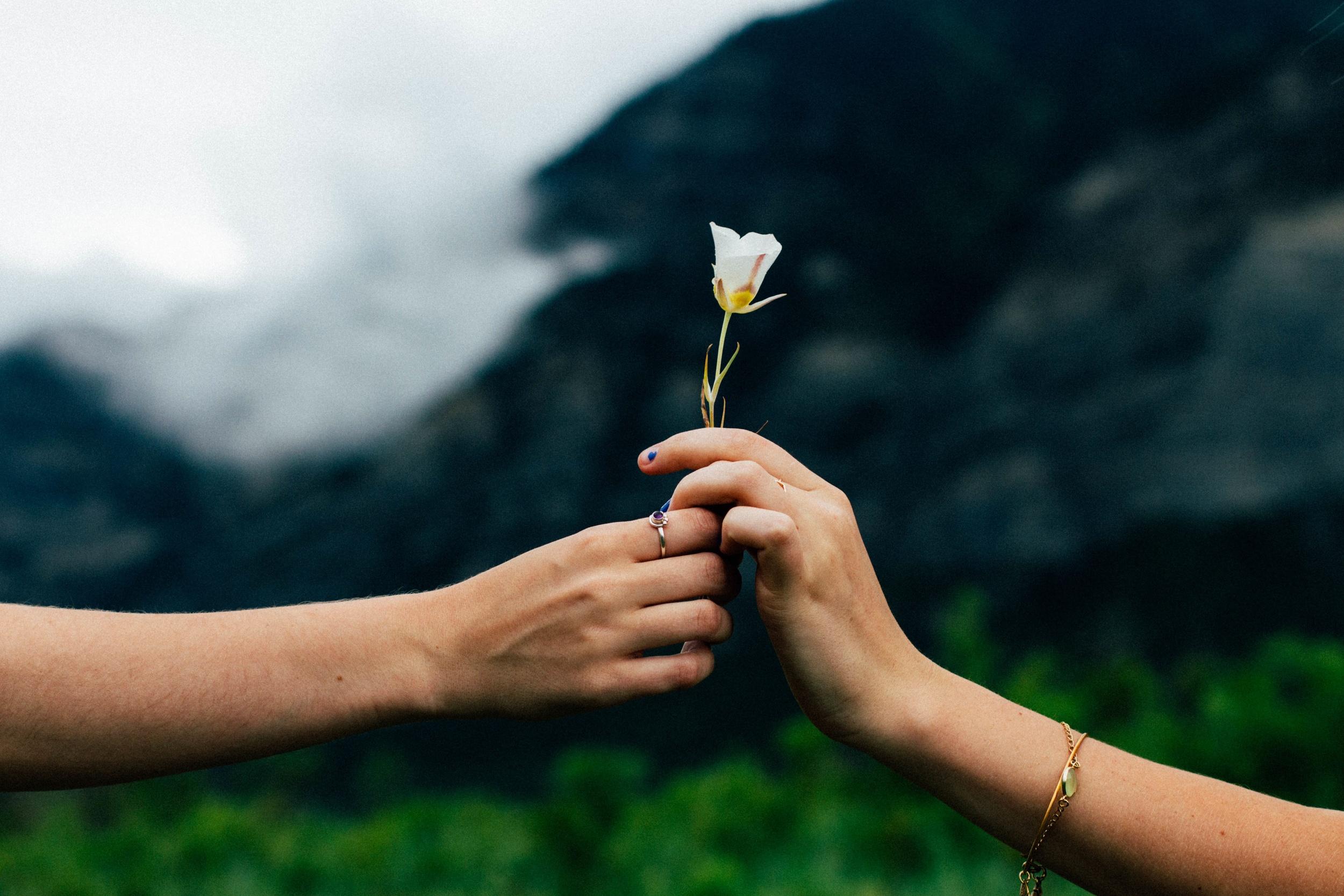 millennial love flower hands couples