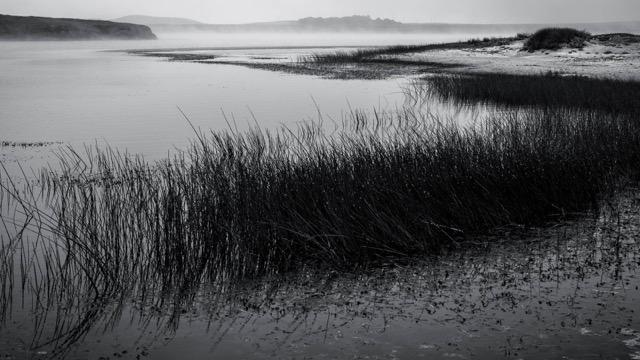 Abbotts Lagoon