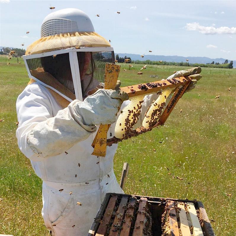 Modern Hive + The Beecharmers