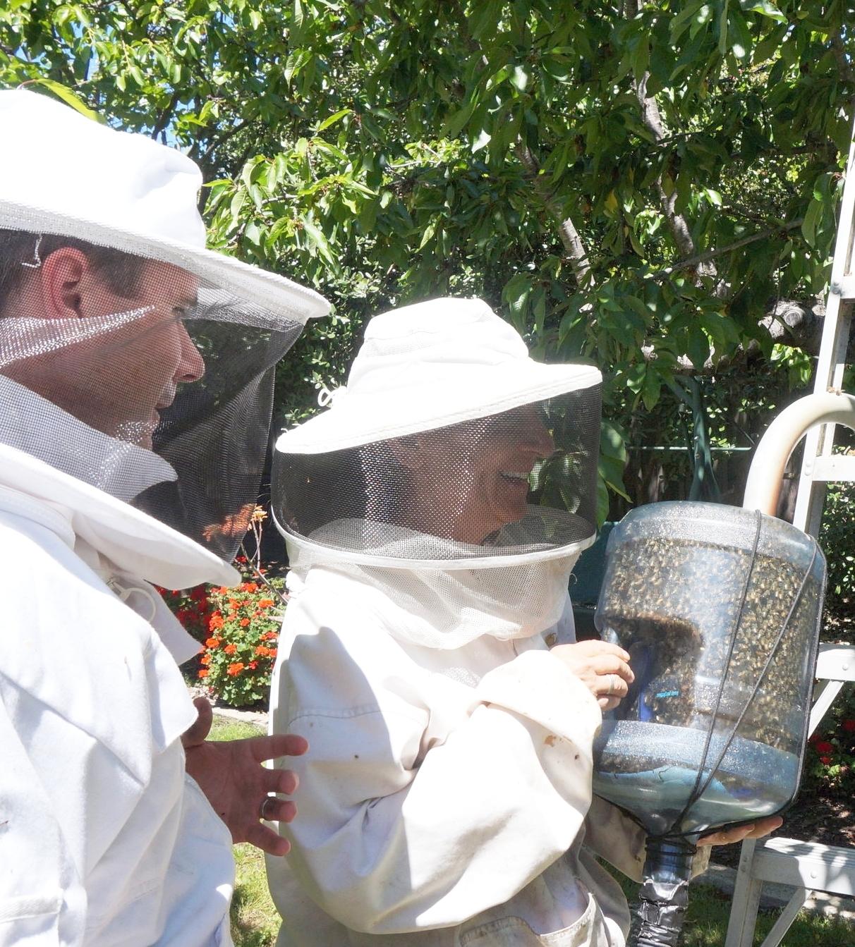 Modern Hive + GirlzWurk Bee Rescue